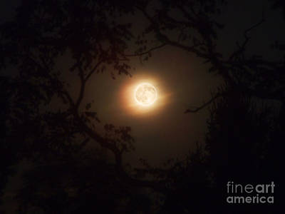 Photograph - Full Moon Photograph by Kristen Fox