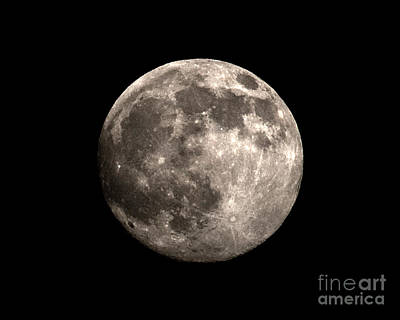 Photograph - Full Moon Rising by Jane Brack