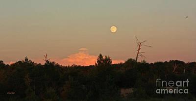Photograph - Full Moon Rising by Terri Mills