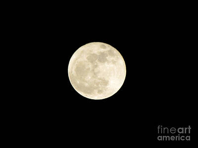 Photograph - Full Moon by Serena Ballard