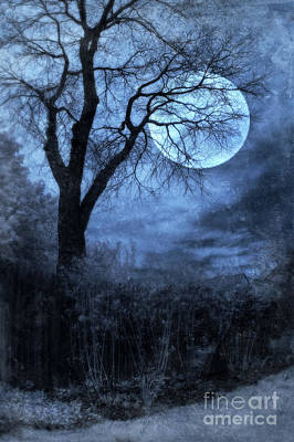 Full Moon Through Bare Trees Branches Art Print by Jill Battaglia