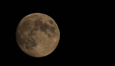 Photograph - Full Moon Tonight by Ronda Broatch