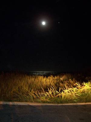 Silver Moonlight Photograph - Full Moon With Golden Beach Glow  by Patricia Taylor