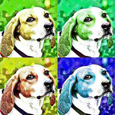 Dog Pop Art Photograph - Funky Beagle by Fraida Gutovich