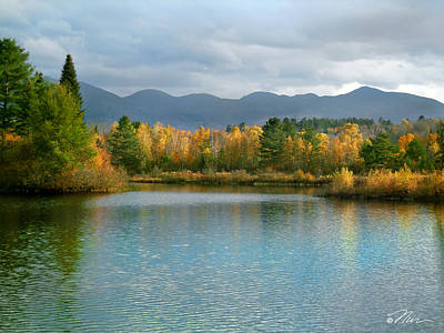 Photograph - Gale River In Franconia New Hampshire by Nancy Griswold