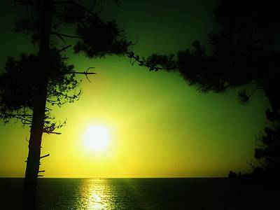 Photograph - Galician Green Sunset 2 by Xoanxo Cespon