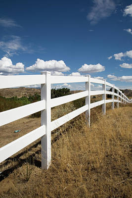 Galloping Fence Art Print by Peter Tellone