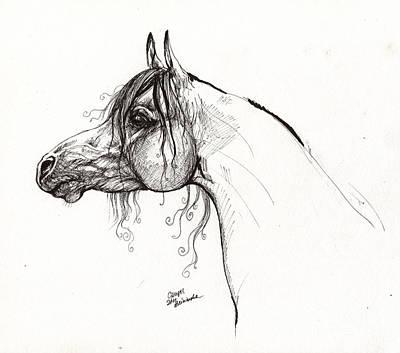 Horses Drawing - Ganges Polish Arabian Horse Drawing by Angel  Tarantella