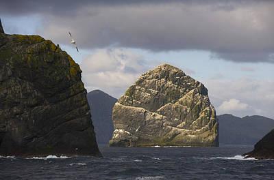 St.kilda Photograph - Gannet Bird Colonies On St. Kilda by Keenpress