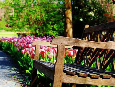 Photograph - Garden Bench by Laura  Grisham