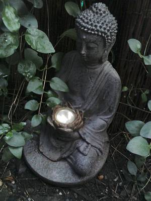 Photograph - Garden Buddha by Julie Butterworth