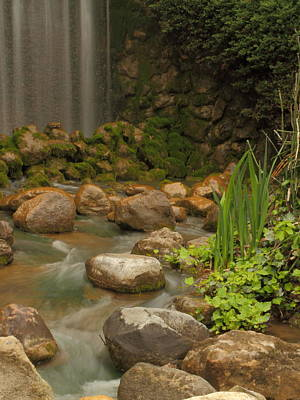 Art Print featuring the photograph Garden Falls by Coby Cooper