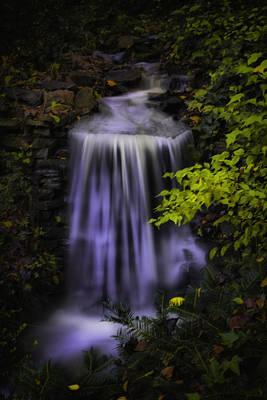 Art Print featuring the photograph Garden Falls by Lynne Jenkins