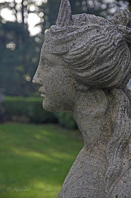 Photograph - Garden Gaze by Cheri Randolph