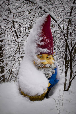 Photograph - Garden Gnome In Winter No.85 by Randall Nyhof