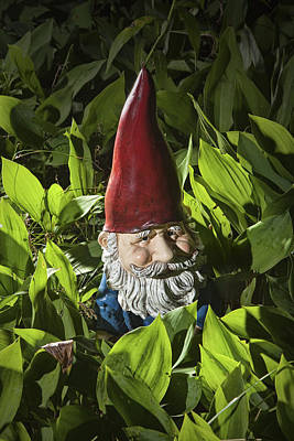 Photograph - Garden Gnome No 0065 by Randall Nyhof