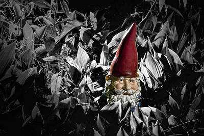 Photograph - Garden Gnome With Gray Background by Randall Nyhof