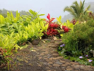 Photograph - Garden Of Eden by Terri Thompson