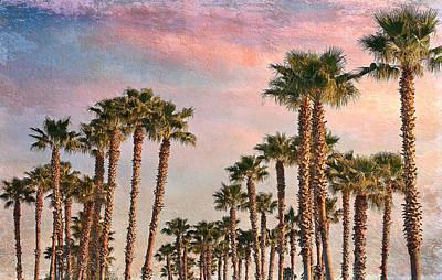 Garden Of Palms Art Print by Stephen Warren