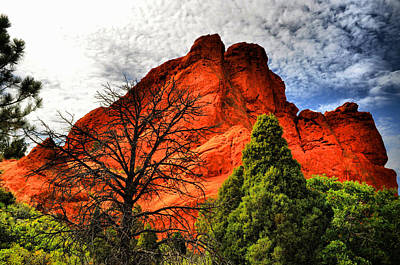 Photograph - Garden Of The Gods 14 by Emily Stauring