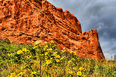 Photograph - Garden Of The Gods 15 by Emily Stauring