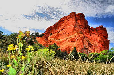 Photograph - Garden Of The Gods 22 by Emily Stauring