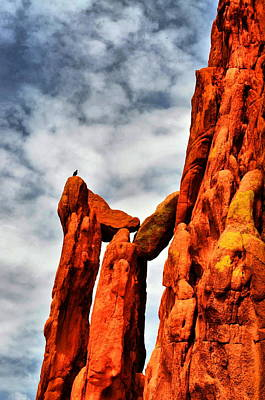 Photograph - Garden Of The Gods 6 by Emily Stauring