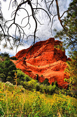 Photograph - Garden Of The Gods 7 by Emily Stauring