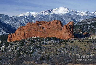 Photograph - Garden Of The Gods by Sandra Bronstein