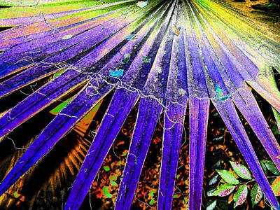 Day Of The Dead Inspired Paintings - Garden Palm At Night by Eric Forster