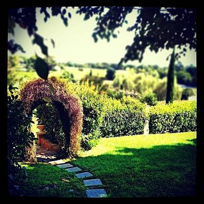 Pathway Photograph - #garden #scenery #hedge #arch by Glen Offereins
