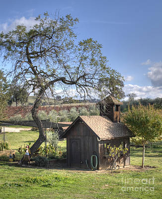 Amador County Photograph - Garden Shed by Diego Re