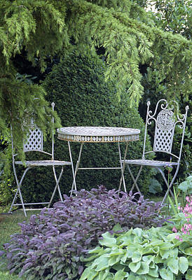 Hosta Sp Photograph - Garden Table And Chairs by Archie Young