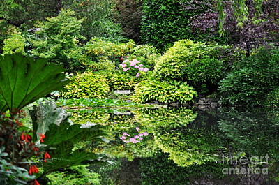 Reflections Photograph - Garden Tapestry 2 by Tanya  Searcy