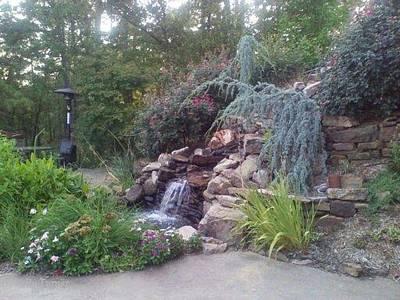 Garden View Art Print