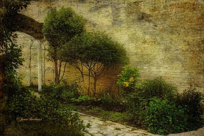 Art Print featuring the photograph Garden Walk by Joan Bertucci