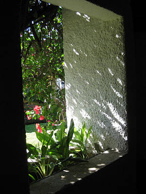 Photograph - Garden Window by Sarah Hornsby