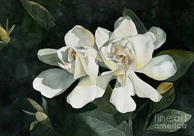 Gardenia Duo 1 Original