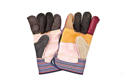 Technical Photograph - Gardening Gloves by Tom Gowanlock