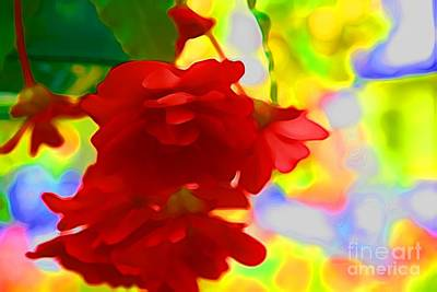 Photograph - Garish by Julie Lueders