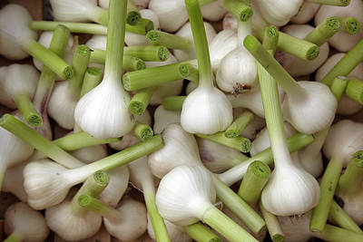 Healthy Eating Photograph - Garlic Bulbs by Laurence Delderfield