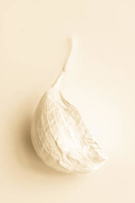 Photograph - Garlic by Daniel Kulinski