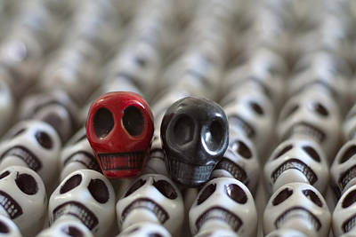 Skulls Photograph - Garnet And Black by Mike Herdering