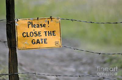 Gate Keeper Art Print by Juls Adams