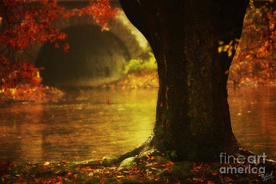 Water Tunnel Photograph - Gateway To Fantasy Land  by Nishanth Gopinathan