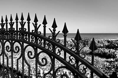 Manalapan Photograph - Gateway To Paradise by Michelle Wiarda