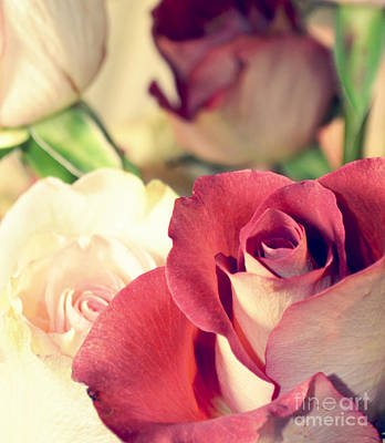 Art Print featuring the photograph Gather Beauty by Robin Dickinson
