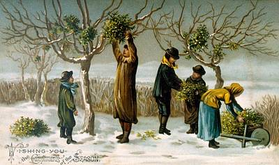 Painting - Gathering Mistletoe by English School