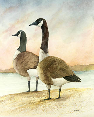 Geese 52012 Art Print