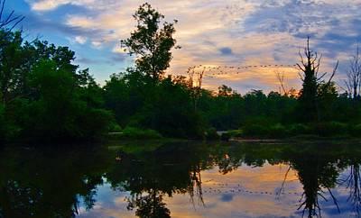 Photograph - Geese At Dawn by Joe Faherty